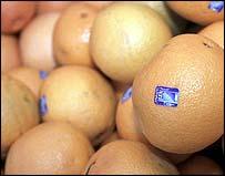 Laranjas, fonte de vitamina C