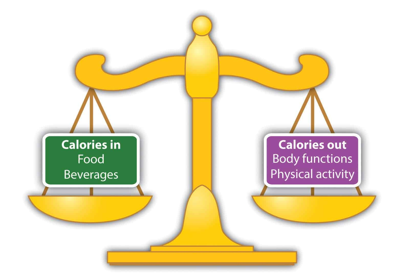 Calories In Calories Out Scale