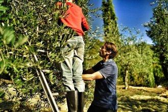 la vialla family agriculture