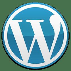 Wordpress Özel Ders Ankara Profesyonel