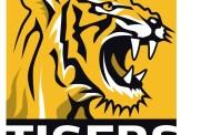 WALTER Tigers Tübingen verpflichten amerikanischen Big Man