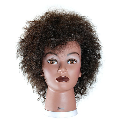 Celebrity 18 Afro Cosmetology Mannequin Head 100 Human