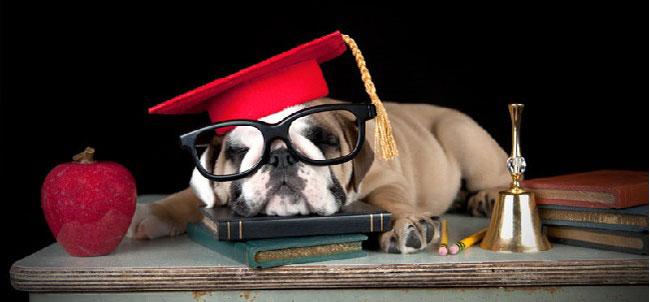Help College Kids Get Through Finals Week