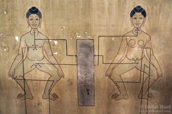 Buddha on Astrology