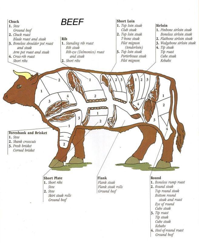 Vleesbenamingen - Rund