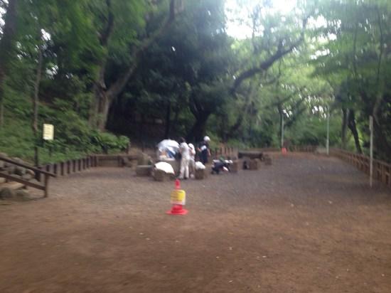 池上本門寺公園5