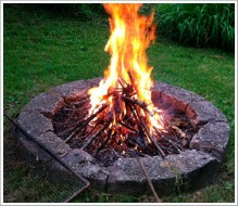 Here Are Some Facts in Wood Grilling!