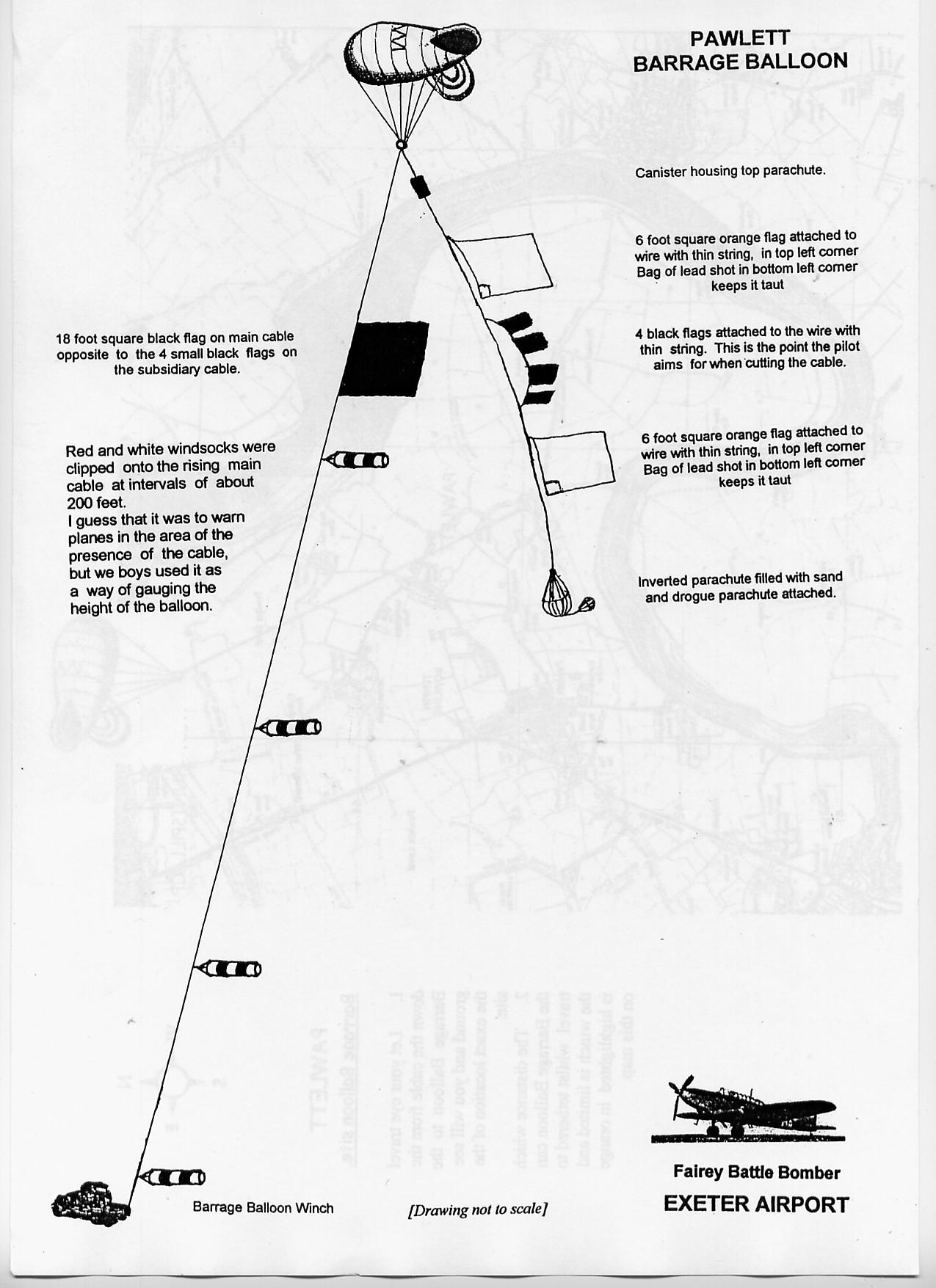 diagram of wart