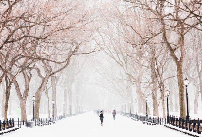 Allee im Schnee, Frau geht alleine