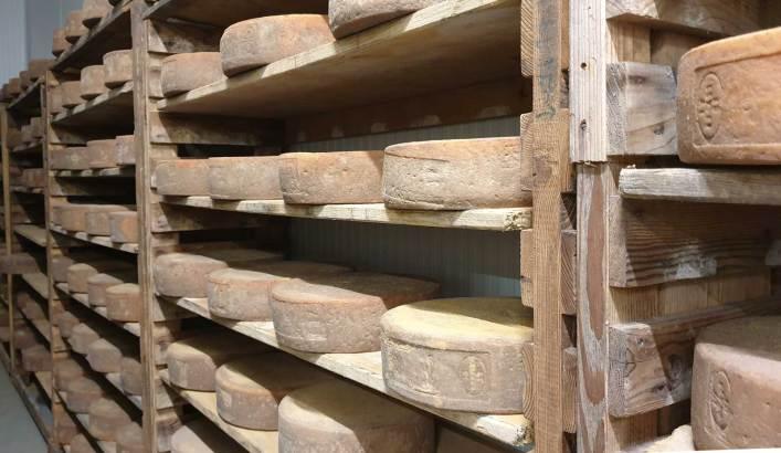 Formaggio stagionati su assi in legno