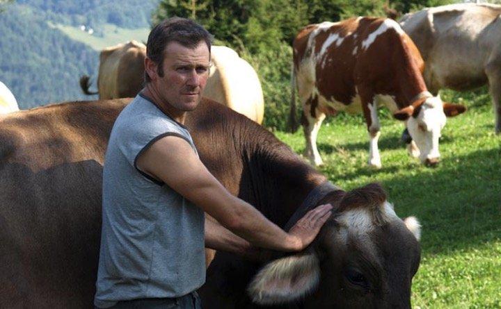 Eggiolini Germano in alpeggio con mucche di razza Bruna Alpina