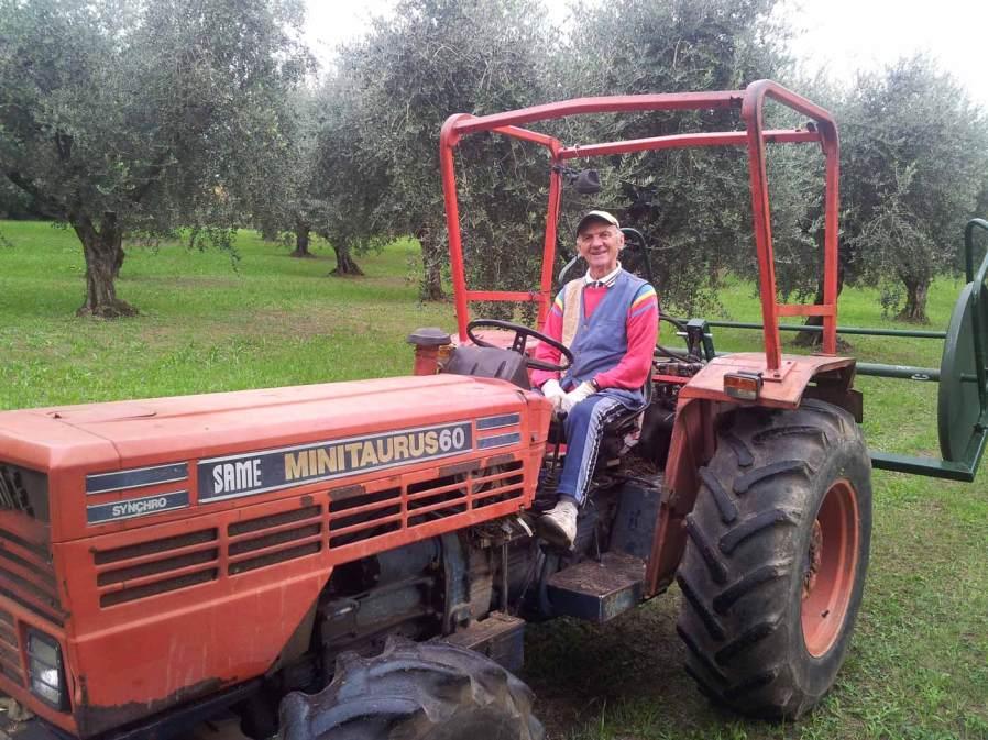 Trattore per raccolta delle olive per la produzione dell'olio garda dop