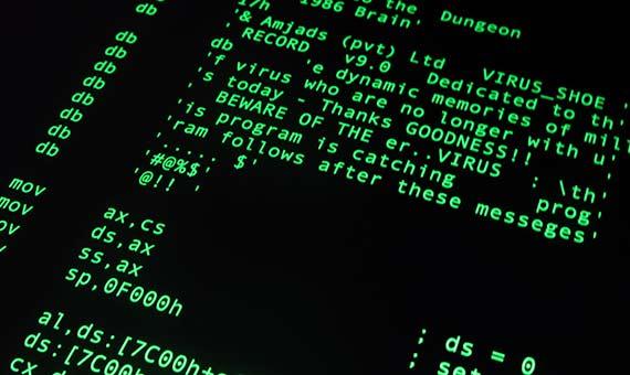 En 1986 aparecía Brain, un virus creado por dos hermanos paquistaníes para castigar a los usuarios que instalaban una copia pirateada de un software. Crédito: Christiaan Colen