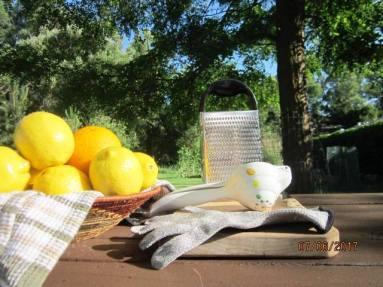 Basic ingredients for Aunt Thale's Lemonade Syrup are pictured here.