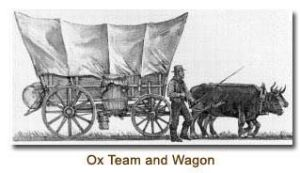 Ox team and wagon. Open source image