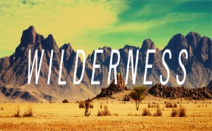 wilderness 400x247