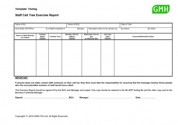 Information Security Audit Report Template