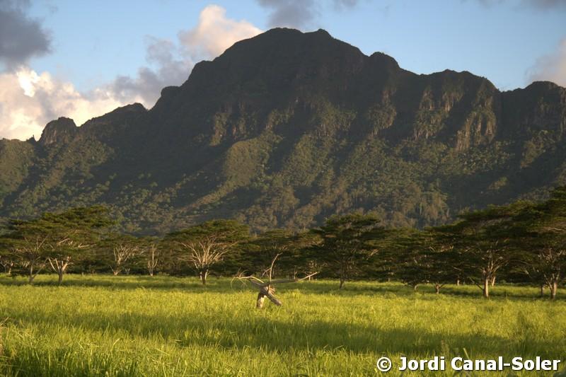 Las montañas de Jurassic Park
