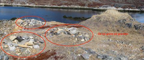 Taylorhavn de 3 grave på gravøen