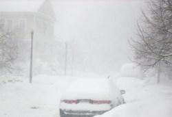 blizzaard