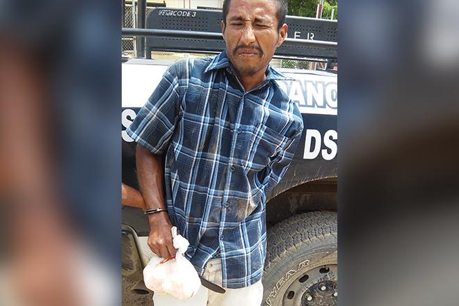 detenido vendedor huevos tortuga