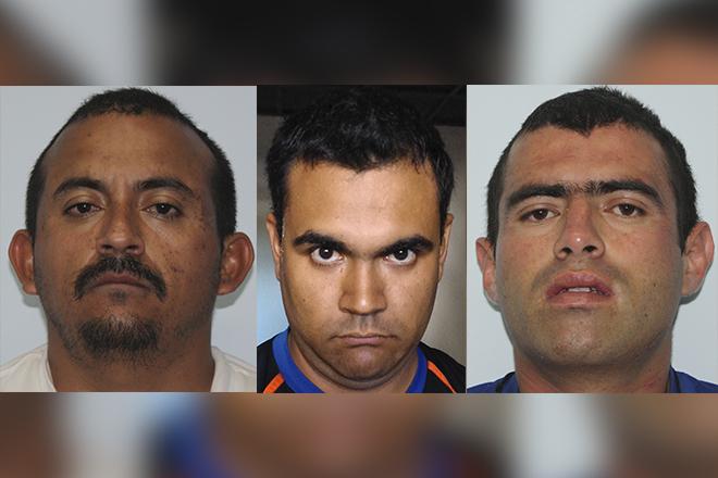 Daniel Navarro, Alejandro Angulo y Felix Alfonso HIguera