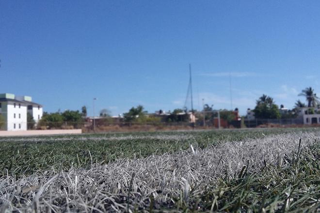 Estadio Futbol Campo 1