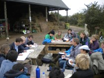 on farm study - 1