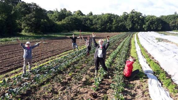Laines Organic Farm