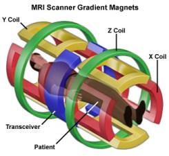 MRI Scanner Coils