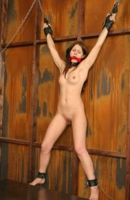 Sexy Brunette Girlfriend Gagged and Suspended on Wall