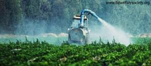 pesticides_agripo