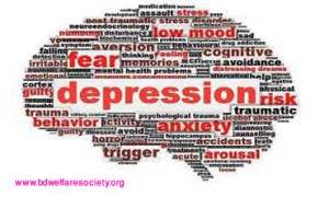 Depression Discussion- Definition or, Meaning of Depression, Collected unique picture no-0023............
