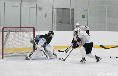 USA Amanda Pelkey takes on the goalie
