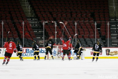 The Metropolitan Riveters celebrate Alexa Gruschow's (not pictured) goal in the second period to extend the Riveters lead to 3 -0