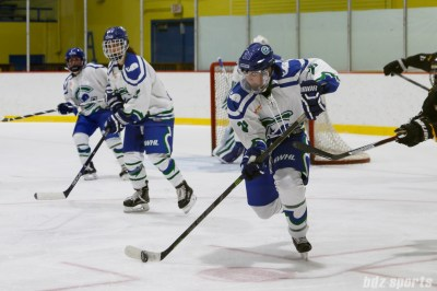 Connecticut Whale defender Cydney Roesler (21) controls the puck for the Whale
