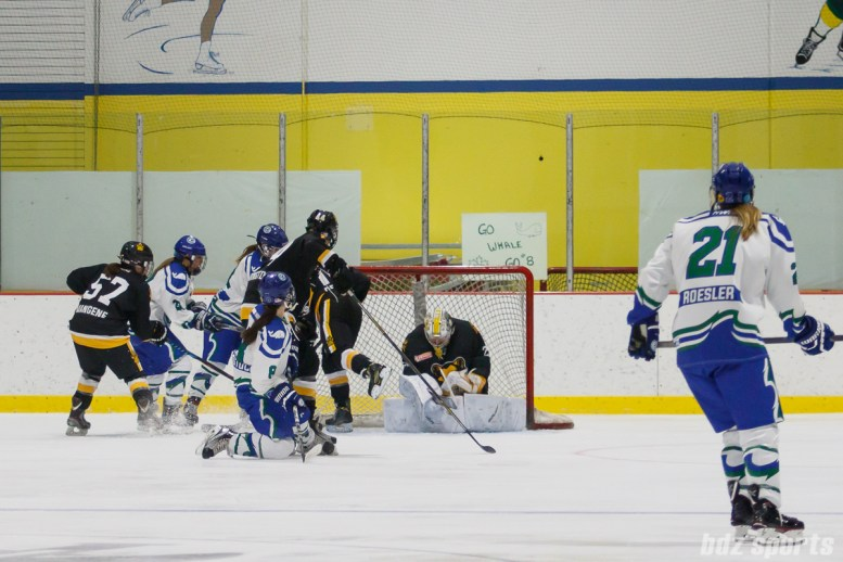 Boston Pride goalie Brittany Ott (29) stops the puck for a save