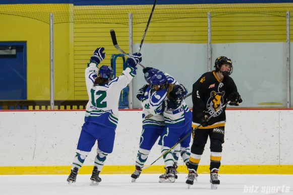 The Connecticut Whale celebrate Whale forward Sam Faber's (28) game tying goal