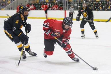 Metropolitan Riveters forward Harrison Browne (24) controls the puck for the Riveters