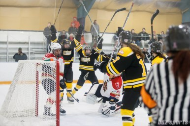 The Boston Blades celebrate Boston Blades forward Taylor Wasylk's (19) goal in the third period
