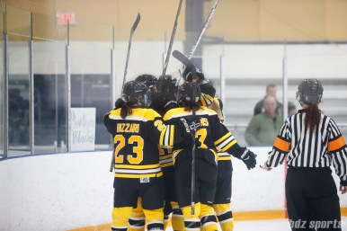 The Boston Blades celebrate teamate Taylor Wasylk's (19) goal in the third period that cut the Kunlun Red Stars's lead to one goal