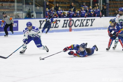 Team South Korea forward Jin Gyu Lee (29) dives to keep the puck away from Connecticut Whale defender Elena Orlando (14)