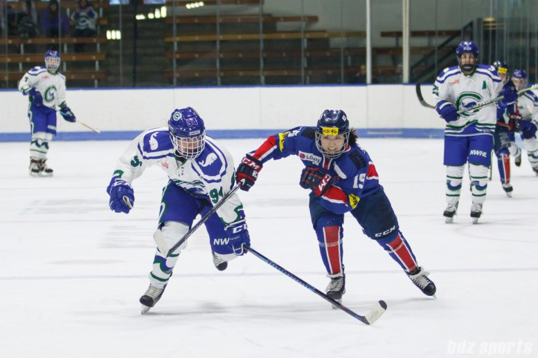 Connecticut Whale forward Grace Klienbach (94) and Team South Korea defender Chae Lin Park (14) chase down a loose puck