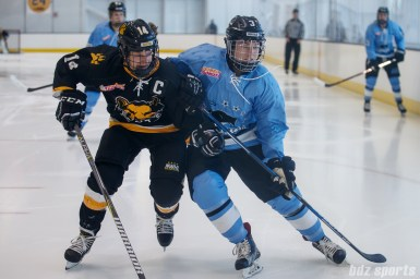 Boston Pride forward Jillian Dempsey (14) pressures Buffalo Beauts defender Sarah Edney (3) for a puck in the corner