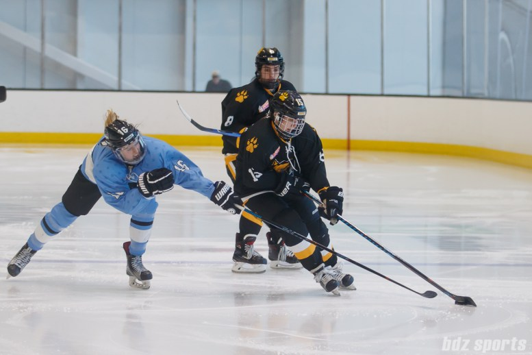 Boston Pride forward Emily Field (15) controls the puck while being challenged by Buffalo Beauts forward Maddie Elia (16)
