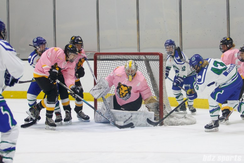 Boston Pride goalie Brittany Ott (29) stops the shot from Connecticut Whale forward Meghan Huertas (43)