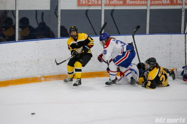 Boston Blades forward Michelle Ng (5) passes off the puck