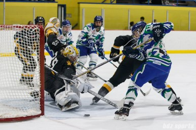 Boston Pride goalie Brittany Ott (29) covers the goal from a shot by Connecticut Whale forward Emily Fluke (11)