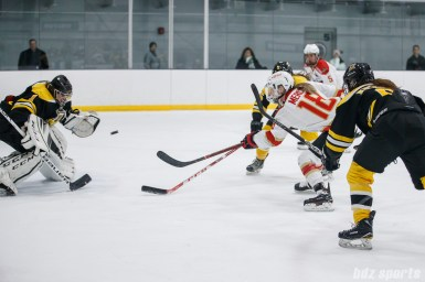 CWHL - Worcester Blades vs Shenzhen KRS Vanke Rays January 9, 2019