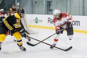 CWHL - Worcester Blades vs Shenzhen KRS Vanke Rays January 9, 2019